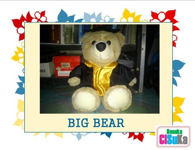 Promo BIG Bear